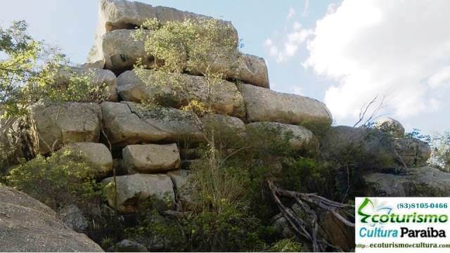 Saca de Lã - Cariri