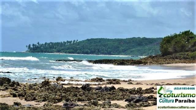 Praia de Carapibus: vista do lado de Coqueiriho