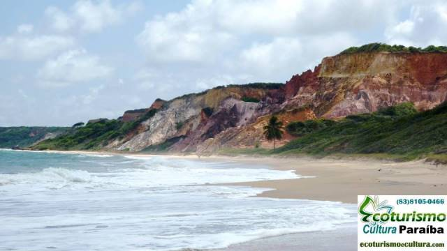 Trilhas nas praias da Paraíba
